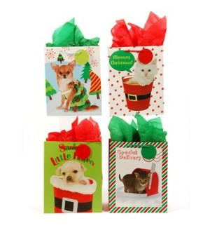 CH-MAS #CM630SG GIFT BAGS, PET STYLE