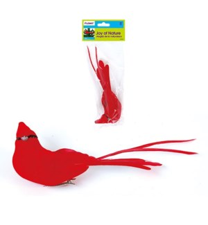 CH-MAS #ED847 BIRD, LONG TAIL CARDINAL