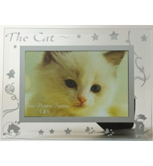 GLASS FRAME #6441 CAT DESIGN