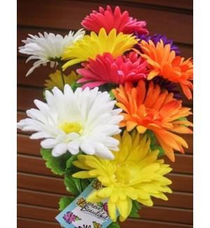 FLOWERS #6020 SPRING GERBER DAISY