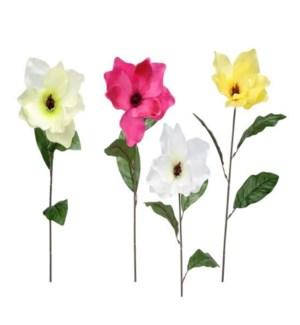 FLOWERS #6043 SPRING MAGNOLIA STEMS