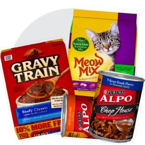 Food & Treats