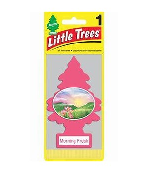 LITTLE TREE CAR FRESHNER MORNING FRESH 24CT