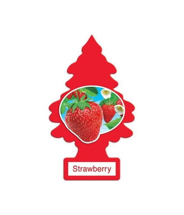 LITTLE TREE CAR FRESHNER STRAWBERRY 24CT