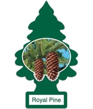 LITTLE TREE CAR FRESHNER ROYAL PINE FRAGANCE 24CT
