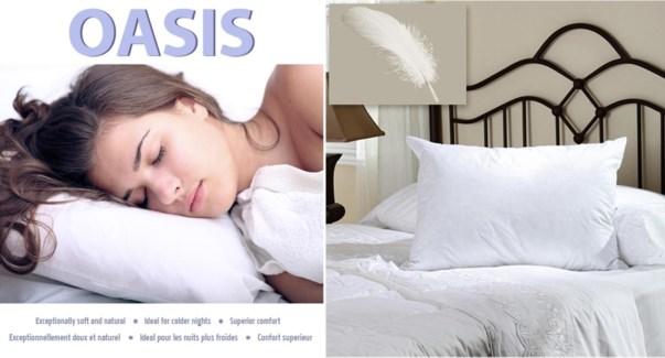 OREILLER OASIS STD 19X27
