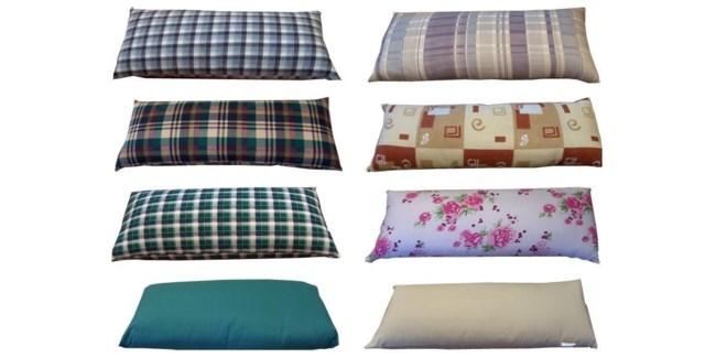 C-ast Asst Pillow -env 19x29