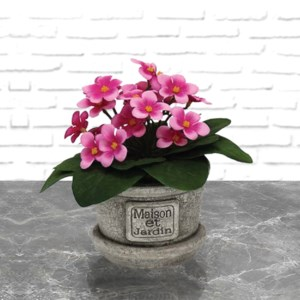 Flowers & Greens - Fleurs & Plantes