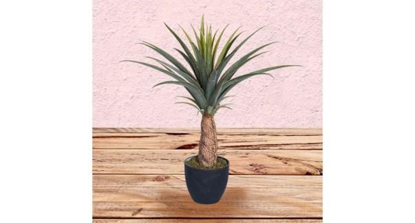 PINEAPPLE  Plante 75CM-4B