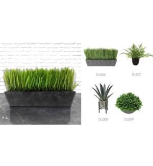 Plant & Black Pot - 14x34-8B