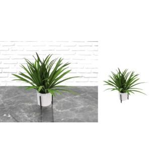 Herbe dans un pot vert - 10x37 - 8B