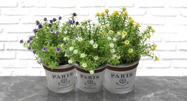 Pot De Fleurs Paris - 11.5x23-6B