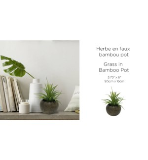 Herbe en Bambou Look Pot 9.5x16 - 12B