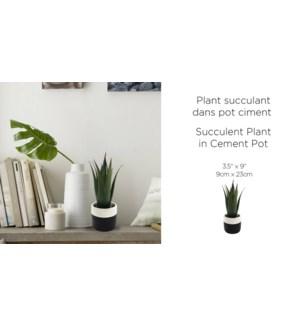 Ciment Suculent Pot Blk / Whi 10.5x27.5-8B