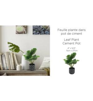 Feuille plante Cement Pot Black 11x37-8B
