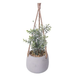 Hanging Plant 12x12x23 - 6B