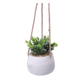 Hanging Plant 14x14x18 - 6B
