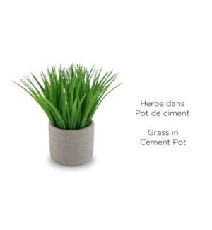 Herbe en pot de flŠche en ciment 12x25.5-6B