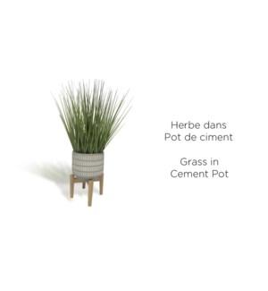 Herbe en pot de flŠche en ciment avec support en bois 15x5 4