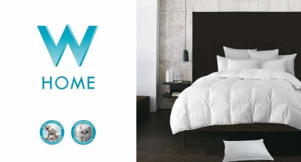 EUROPE COUETTE BLANC LVL3 GRAND