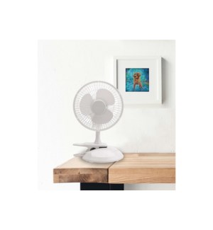 "6"" DESK FAN 2IN 1 12/B"