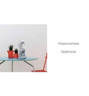 Hippocampe 7.7x5.6x16.7 - 12B