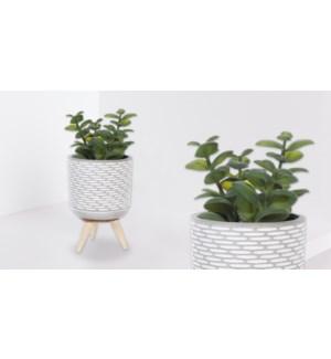 Plante Artificielle 3 Pieds Bois - G'o - 7x7x16 - 12B