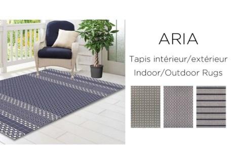 Tapis ext'rieur Aria Raye 5x7 3/B