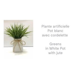 Verts en pot blanc avec jute 13x13x35-8B