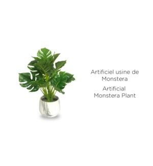 Monstera en pot de marbre 12x36-8B