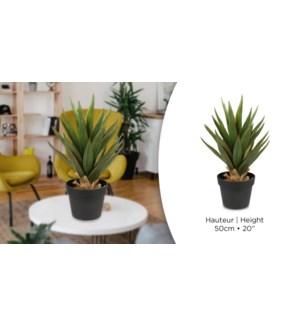 Plante artificielle AloeH50cm - 4B