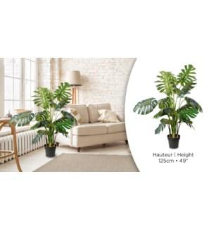 Plante artificielle Split Philo H125cm-2B