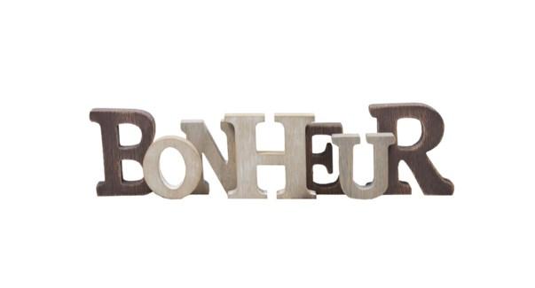 Wood Placque - Bonheur-12x46x3-8B
