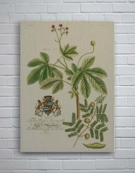 Vintage Flora-Botanical and Floral