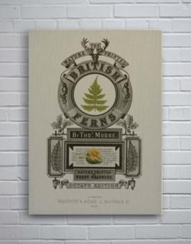 British Fern-Botanical and Floral