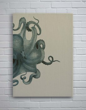 Octopus Study Blue-Coastal and Tropical