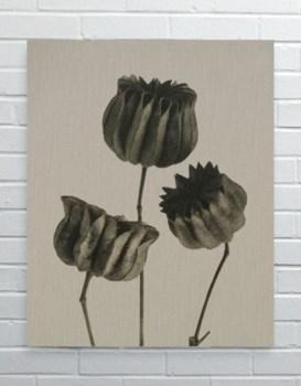 Vintage Plant 01-Botanical and Floral