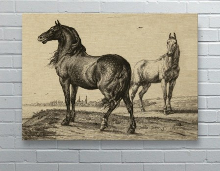 Horse Landscape-Animals and Nature