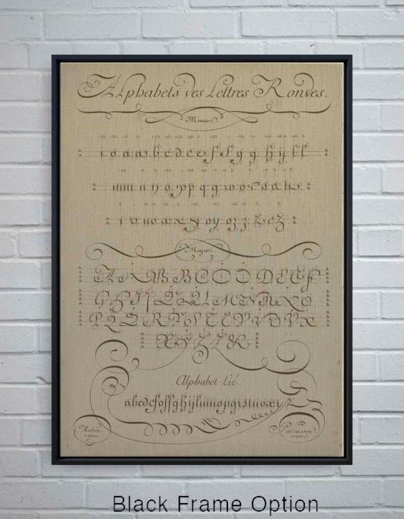 Alphabet-Decorative Elements