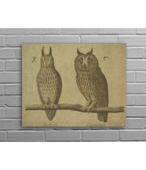 Owls Hemp Panel-Animal and Nature