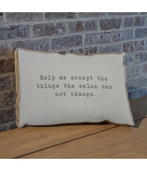 Help me accept the things the salon can not change pillow