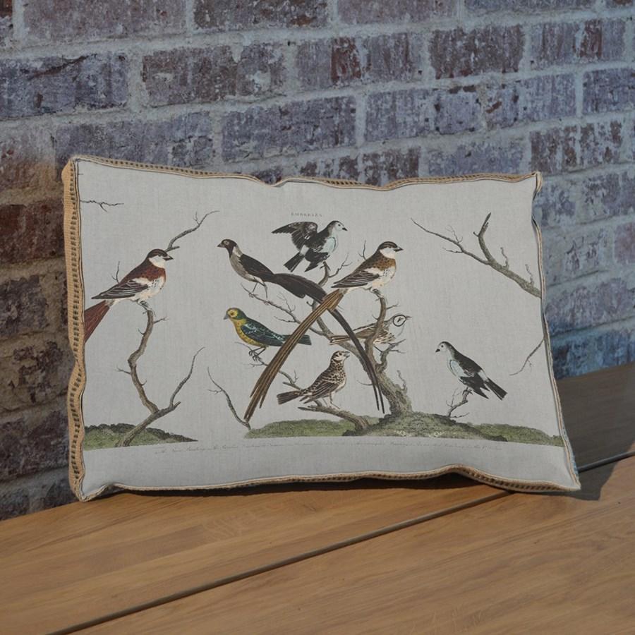 Bunting Bird pillow