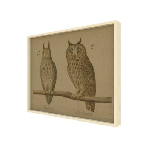 Owls Hemp Panel