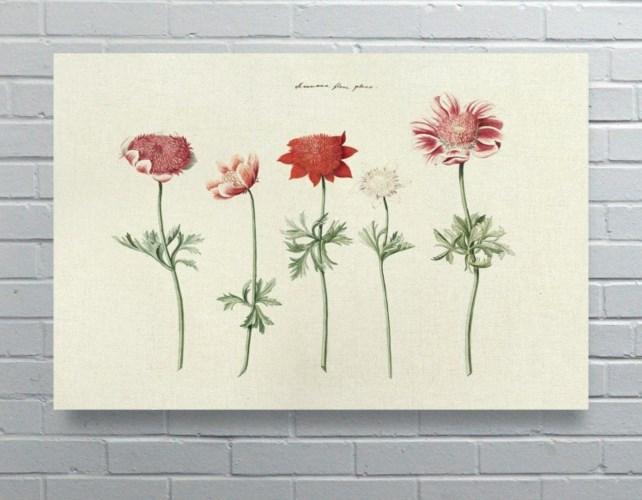 5 Flowers-Floral and Botanical
