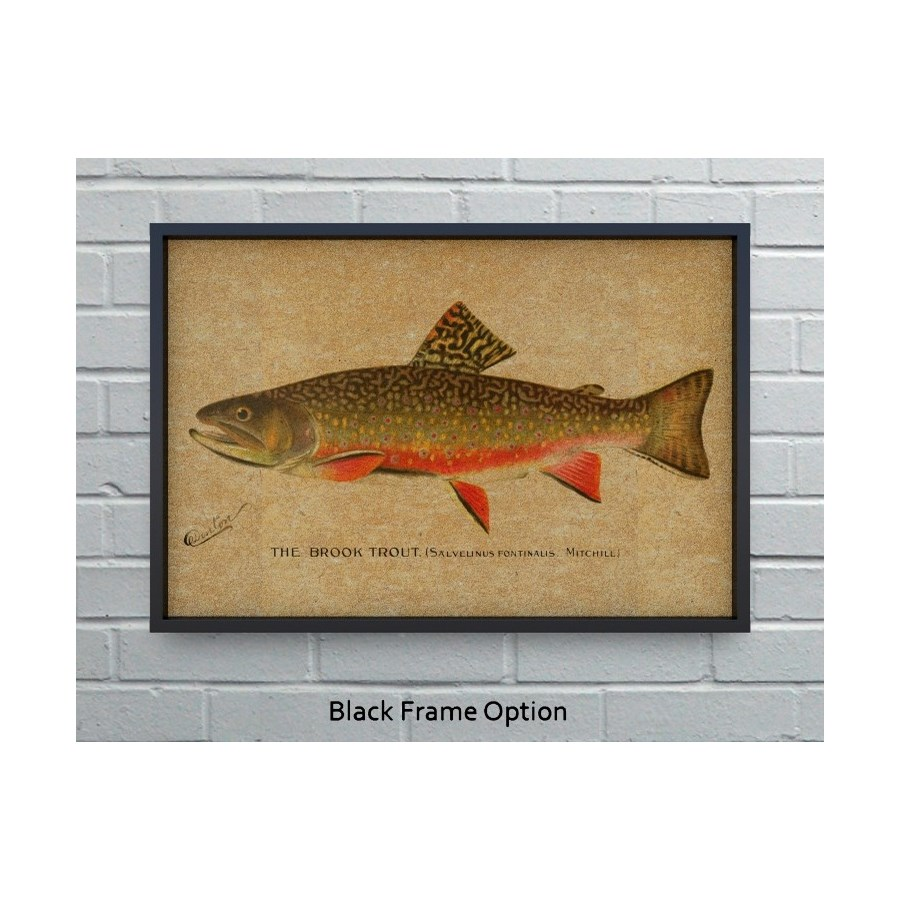 Brook Trout hemp art-Animals and Nature