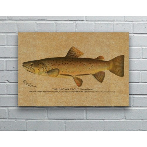 Brown Trout hemp art
