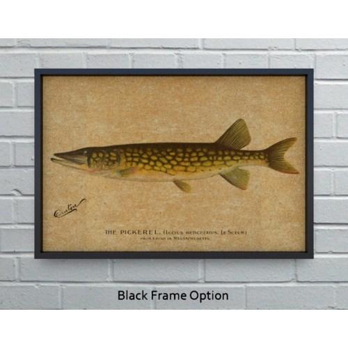 Pickerel hemp art-Animals and Nature