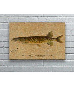 Pickerel hemp art-Animals and Nature