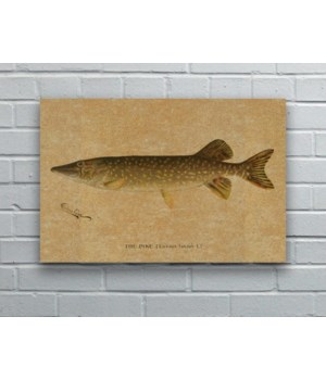 Pike hemp art -Animals and Nature