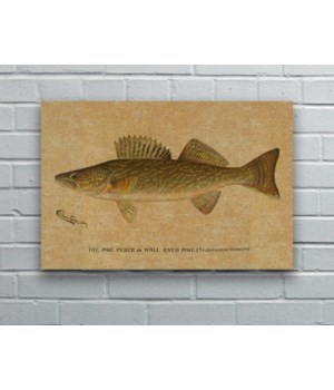 Denton Walleye hemp art-Animals and Nature